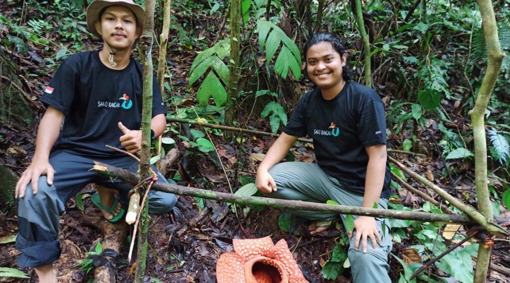Rafflesia Gadutensis, Sebuah Pesona Lain dari  Hutan Sako